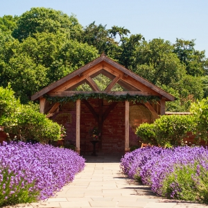 The arbour and the lavendar lined aisle at Upton Barn & Walled Garden