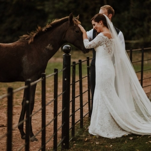 Bride and Groom pet a horse by iron railings at Upton Barn