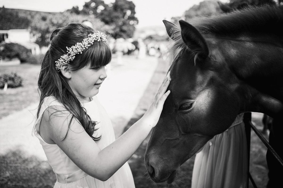 Bridesmaid pets a young foal