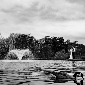 Bride and Groom enbrace beside the lake and fountain at Upton Barn & Walled Garden with a Canada Goose in the foreground